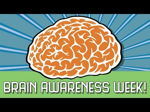 Join Us For Brain Awareness Week!