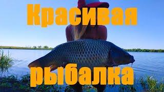 Красивая рыбалка за 60 секунд Промо