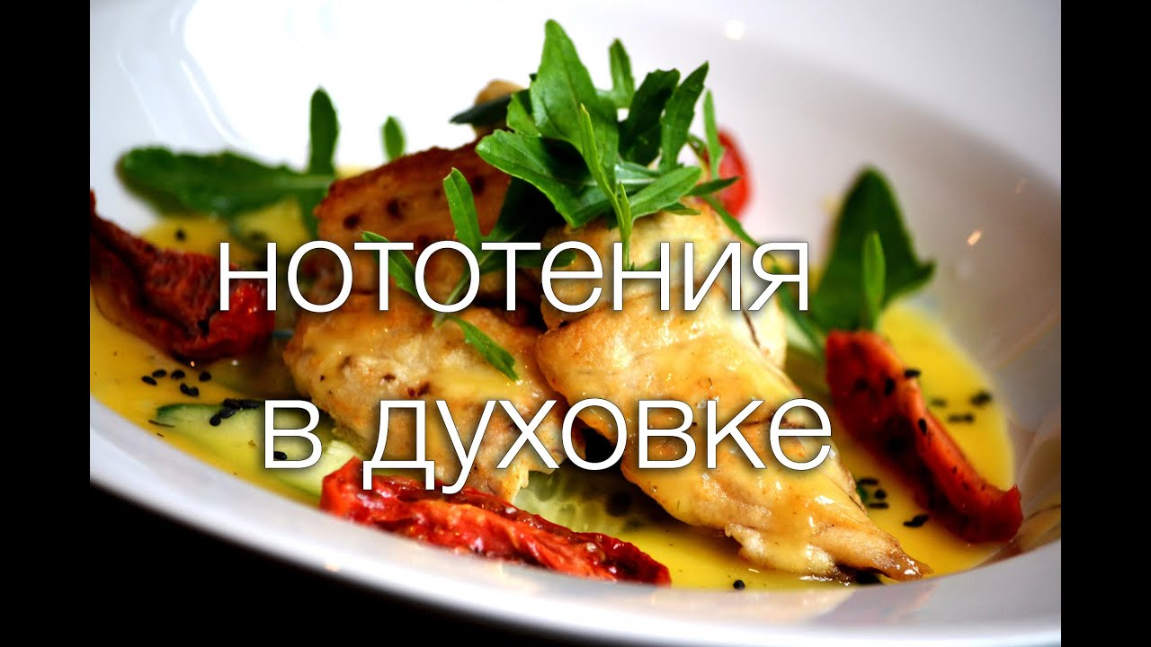 нототения в духовке рецепты с фото