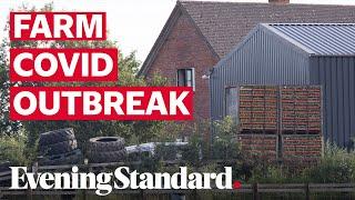 Coronavirus UK: Herefordshire farm in lockdown after 73 Covid-19 cases