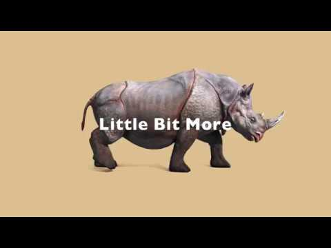 Little Bit More / AmPm Feat. Ayden (Lyric VIdeo)