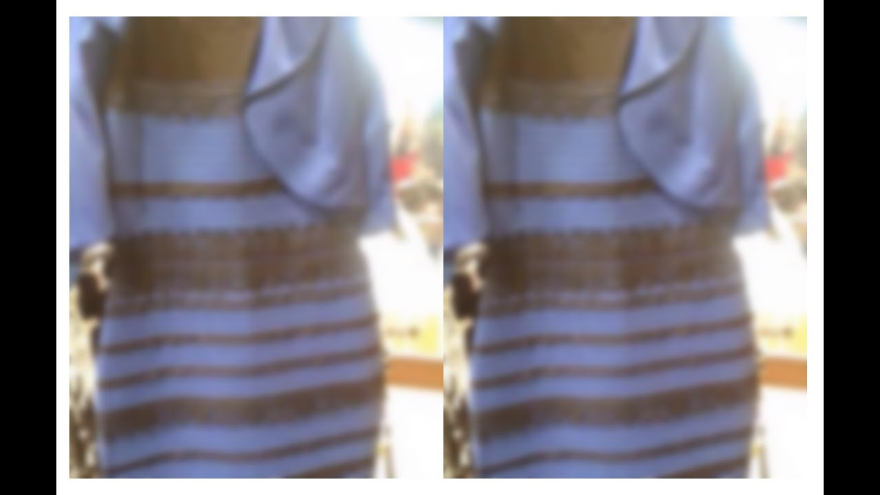 The dress debate - Debate Over The Jacket Color Goes Viral On Ny Daily News