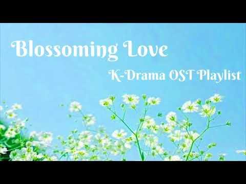 Blossoming Love - K-Drama OST Playlist