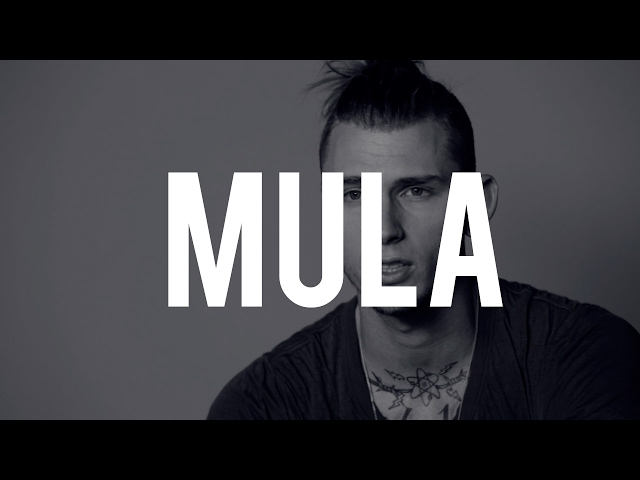 [FREE] Machine Gun Kelly - MULA |Prod. By HaydenCartel| MGK Type Beat
