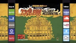 """Wayne Daniel & Malijah & Zanda P - """"Ganjaman Rule"""" (Reggaeland Prod. 2011)"""