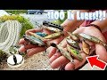 Magnet Fishing! Found $100 in Fishing Lures, Knife, and Bullet Shell (Treasure Hunting)