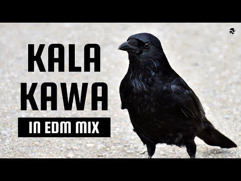 Kala Kauwa | In EDM | DJ Viren | SG Production