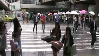 外骨人が梅田駅前で演奏しとります♪ギター濡れるよ~!!エリックが道を横断して行きました。