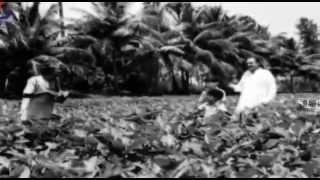 Muthukku Muthaga - 2 From Movie Anbu Sagotharargal