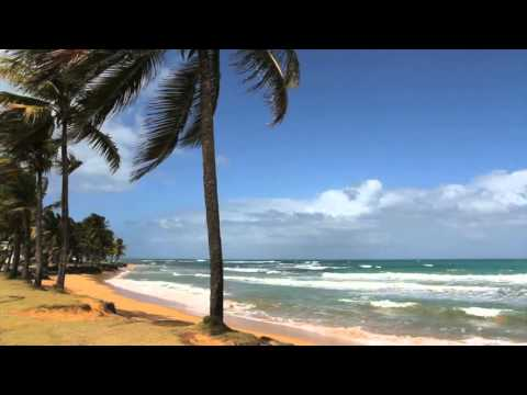 Beach Escape  - Sounds of A Tropical Beach Paradise  - Nature Sounds