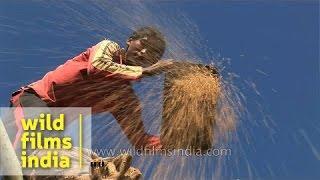 Magh Bihu - celebration of harvest in Assam