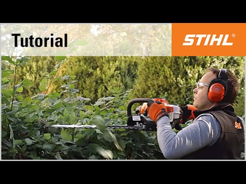 Petrol hedge trimmer cutting technique: pruning with the STIHL HS 81 R