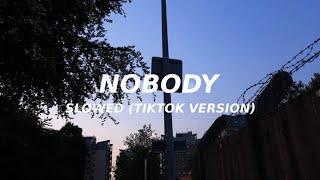 Nobody - Mitski (slowed) (TikTok version) nobody no body nobody no