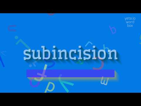 "How to say ""subincision""! (High Quality Voices)"