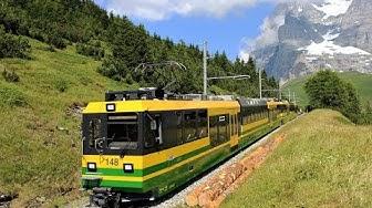 Wengernalpbahn im Sommer 2015 | Neue Panoramazüge im Einsatz