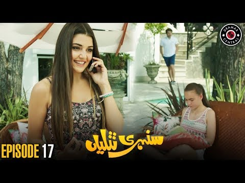 Sunehri Titliyan   Episode 17   Turkish Drama   Hande Ercel   Dramas Central
