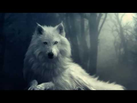 Epic  - White Wolf Spirit