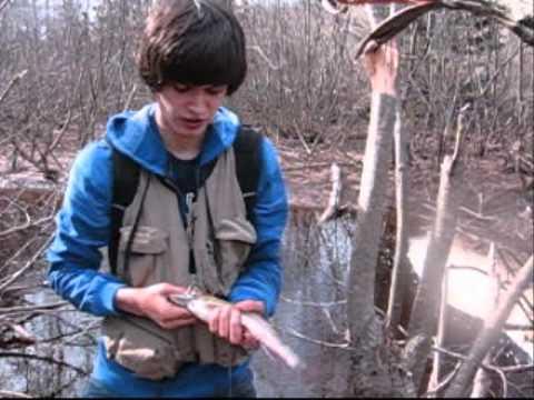 Trout Fishing New Brunswick 2011