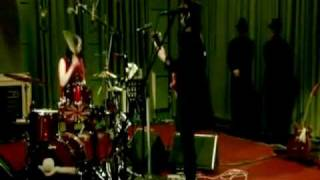 The White Stripes - Blue Orchid / Party of Special Things To Do