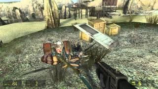 Half-Life 2 #24: Queen Antlion
