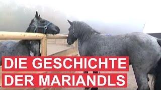 Gut Aiderbichl: Die Geschichte der Mariandls