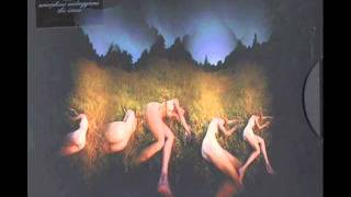 Amorphous Androgynous The Isness - Meadows