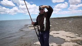 Pesca de Pejerrey en el Balneario Los Pocitos 22 de Diciembre de 2014