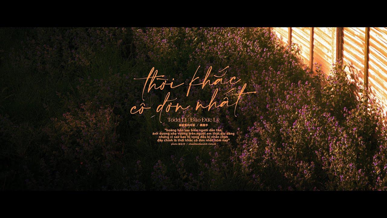 [Vietsub] Thời Khắc Cô Đơn Nhất - Todd Li | 最寂寞的时候 - Todd Li