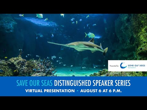 Save Our Seas Distinguished Speakers Series on Endangered Sawfish of Florida