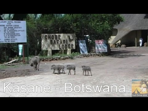 Self Drive Kasane Botswana