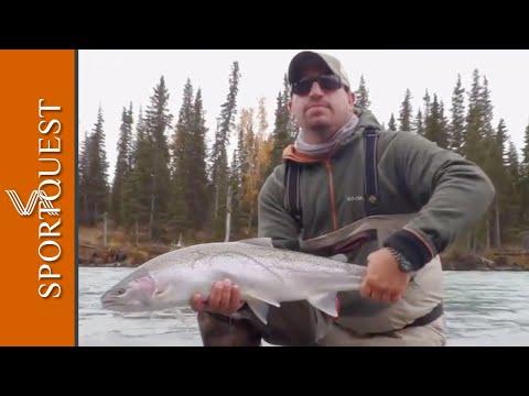 Fishing For Steelheads With Alaska Steelhead Co, Alaska 🐟