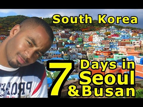 South Korea Travelogue | Seoul + Busan in 7 Days! | Don's ESL Adventure!