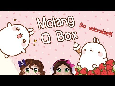 Cuteness Overload! ~ Molang Q Box Opening