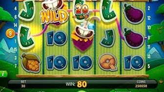 Wonky Wabbits Slot Video Review - Casinos-Online-888.com