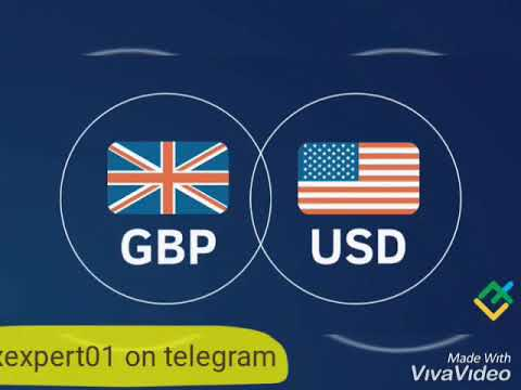 Plain forex trading signals service