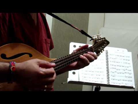 J. S. Bach - Partita BWV 1004 (Allemande) by Paris Perisinakis, mandolin