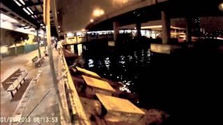 香港釣魚 前打 落入 鱸魚