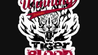 Tiger Blood Freestyle