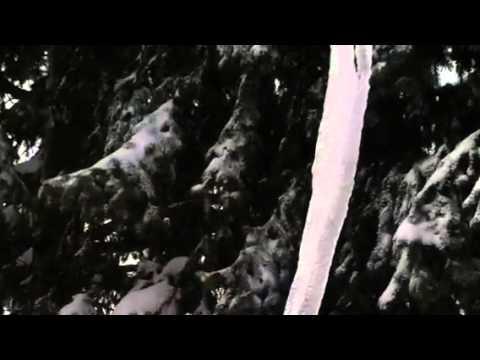 D.M.X Jinx God On Beats Blown Away blizzard 2013.