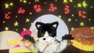 むぎ(猫)『どんなふうに』 thumbnail