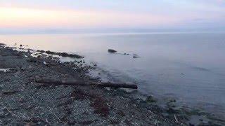 рассвет на море, дикий пляж, криница, краснодарский край(море на рассвете - это потрясающее переживание. советую всем испытать эту тишину и умиротворение. что..., 2016-02-05T10:27:22.000Z)