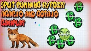 Split Running W/Foxxy Agar.io And Gota.io Gameplay