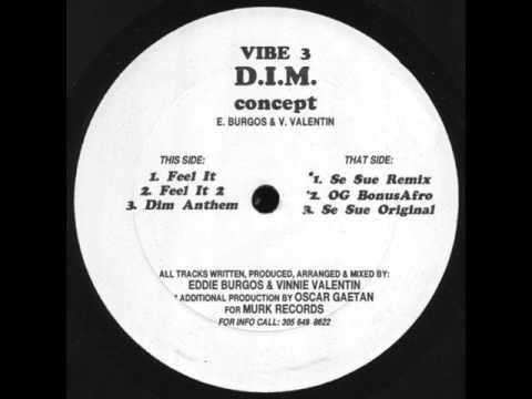 D.I.M Concept   Dim Anthem