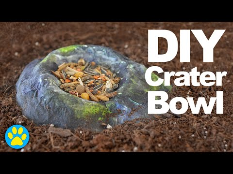 DIY Crater Food Bowl