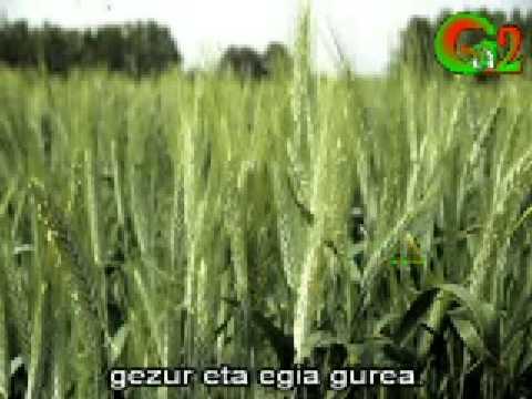 Nafarroa arragoa (Xabier Lete)