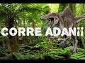 CORRE ADAN¡¡ | Adan y Eva 1