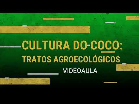 ATER A DISTÂNCIA_Cultura do Coco - Tratos Agroecológicos