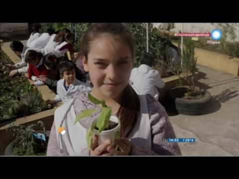 "<h3 class=""list-group-item-title"">Campaña 5.0 visita Huerta Escolar</h3>"
