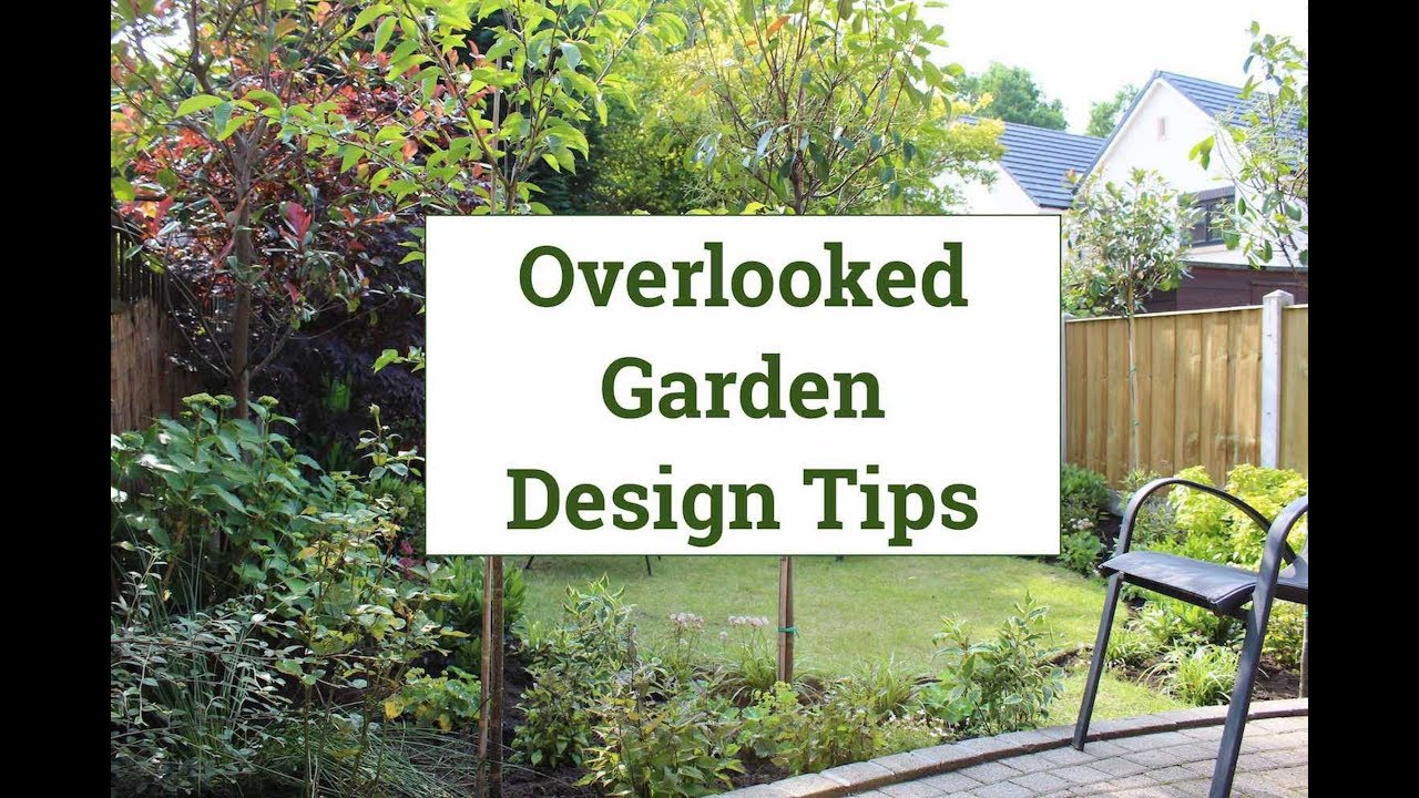 Overlooked back garden design tips youtube for In your garden designs