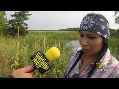 Ojibwe Harvest Wild Rice on Ceded Land to Exert 1855 Treaty Rights